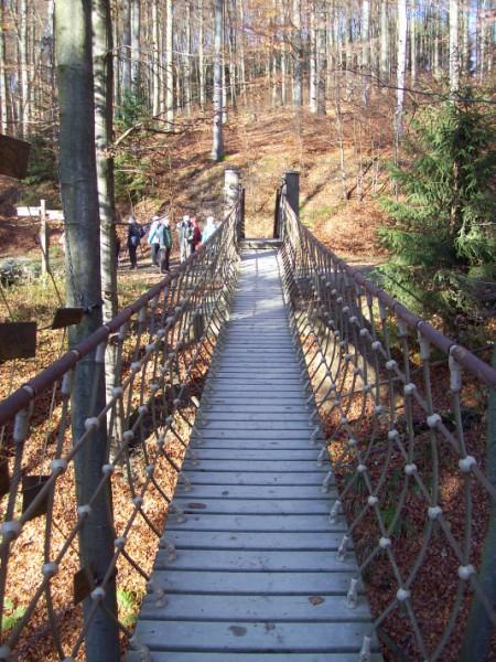 Auch eine Schönheit auf dem Waldskulpturenweg - die Hängebrücke!