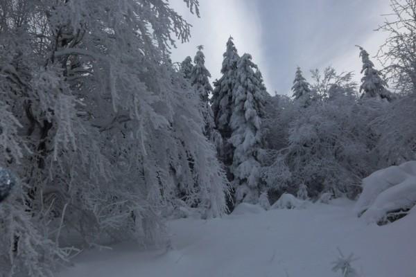 Winter im Hochsauerland