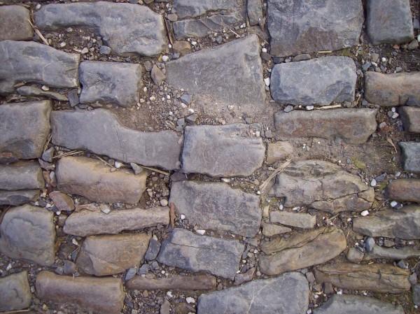 Über historisches Pflaster ging es dann in den Park des Schlosses, früher auch Tierpark genannt