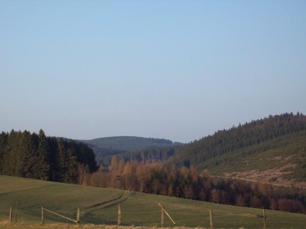 Im Osten, die Wallburg über Wemlighausen