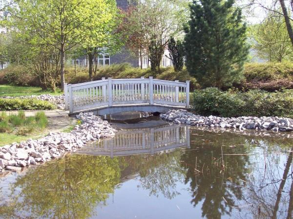 Noch ein letzter Blick, die kleine Brücke im Berleburger Stadtpark.