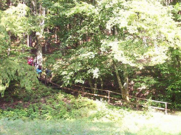 Steil ging es die gut begehbaren Stiegen bergauf!