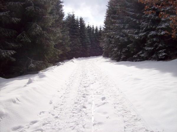 Während unten im Städtchen in Berleburg fast kaum noch Schnee lag, war hier oben noch tiefster Winter