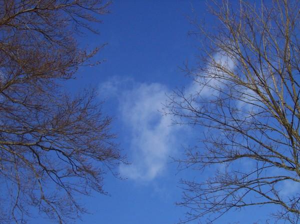 Gibt es ein schöneres blau als das des Himmels?