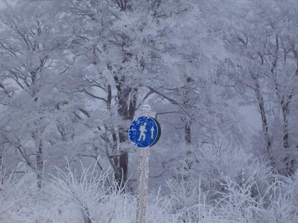 Bitte hier entlang zur Skihütte