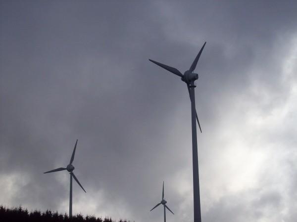 Ganz nah dran am Windpark in Wunderthausen