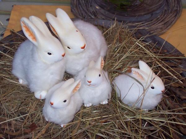 Eine kleine Osterhasenfamilie, allerdings nur zur Dekoration geeignet