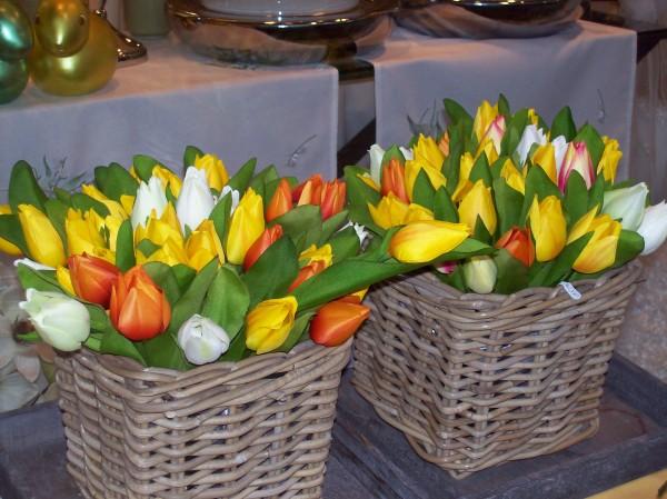 Tulpen, an denen sich nicht nur die niederländischen Gäste erfreuten