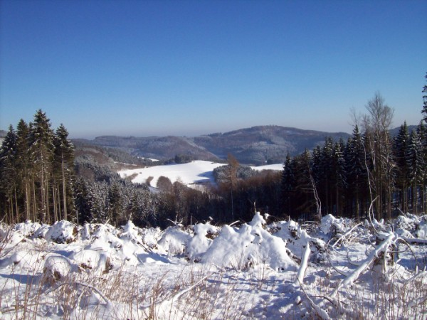 Ein gesegnetes Weihnachtsfest 2014 und ein gutes Jahr 2015 wünscht Ihnen der SGV, Abteilung Bad Berleburg