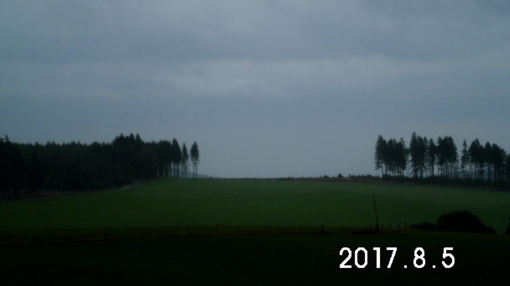 Wittgensteiner Regenwald